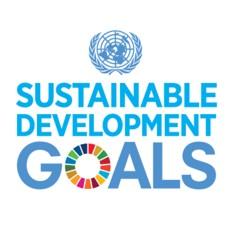 UN SDG Logo.jpg